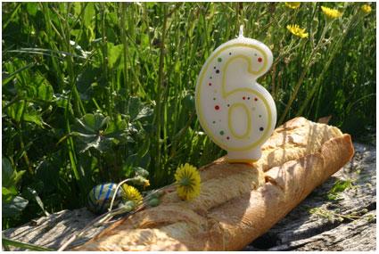 feest feest zes jaar jeej