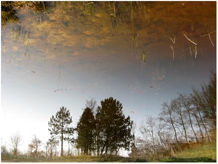 weer een reflectie hoe schoon is het weer
