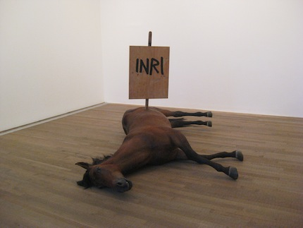 arm paard