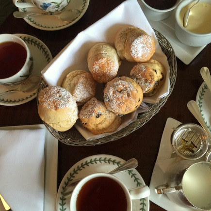 scones! en clotted cream